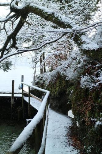 Boathouse_snow